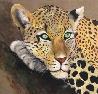 Gepard på træ