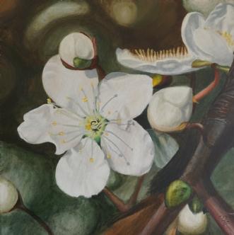 Mirabelleblomster by Sigrid Hedegaard Laursen | maleri