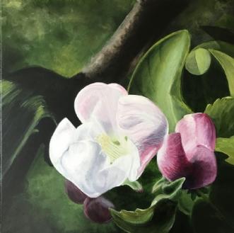 Æbleblomst og knopp.. by Sigrid Hedegaard Laursen | maleri