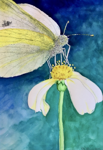 Lille sommerfugl by Puk Risom | tegning